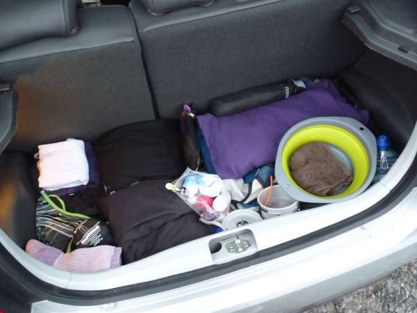 Organisation in the trunk